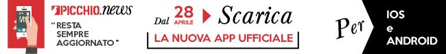 Picchio News App