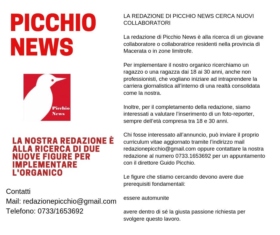 Picchio Assume