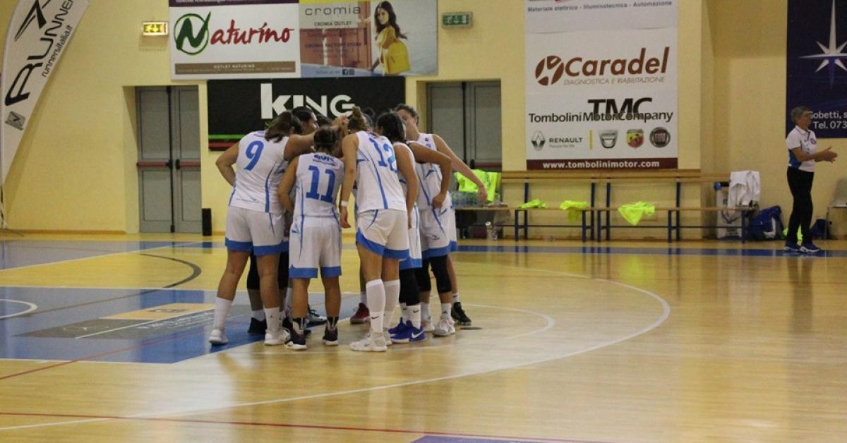 La Feba Civitanova Marche esce sconfitta da Ariano Irpino - Picchio News