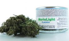 """Cannabis shop, San Patrignano """"sta con il questore di Macerata"""""""