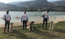 Tornano le canoe e cani da salvataggio in acqua al lago di Caccamo