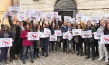 Ancona, flash mob dei giornalisti in piazza