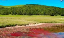 """""""Il Lago di Pilato non diventa Rosso"""" parola del biologo Simone Gatto"""