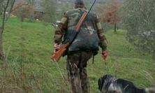 Marche, Il Tar accoglie e sospende la caccia