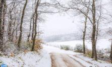 Arriva la prima neve sui colli di Cingoli (FOTO)