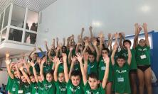 """Civitanova, 2° Memorial """"Riccardo Morichetti"""": oltre 300 atleti in gara"""