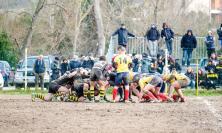 Rugby, vittoria d'autorità della Banca Macerata sul campo del Castel San Pietro