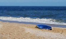 Tragedia a Porto Sant'Elpidio, malore fatale in mare: la vittima è il civitanovese Fabrizio Recchi