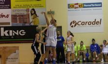 La Feba Civitanova Marche cerca altri due punti preziosi contro l'Orza Rent Nico Basket