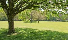 Tolentino, affidata al Comitato Viale Vittorio Veneto la manutenzione del Parco della Rinascita
