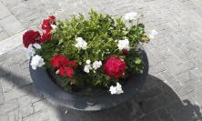 """San Severino, """"Prendi a cuore una fioriera"""" : iniziativa per sistemare le vasche in piazza"""