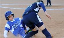 Torneo delle regioni di baseball e softball, le Marche protagoniste: il programma