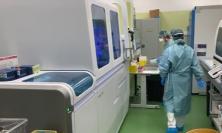 Coronavirus Marche, risalita della curva d'aumento: 150 nuovi casi su 667 tamponi effettuati