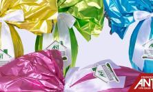 Civitanova, l'Ant in prima linea nell'emergenza sanitaria: come sostenerla acquistando le uova di Pasqua