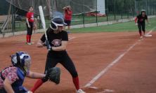 Softball Macerata, è già tempo di campionato: l'11 luglio esordio contro Massa
