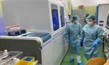 Coronavirus Marche, 415 nuovi casi in 24 ore: 76 sono Provincia di Macerata