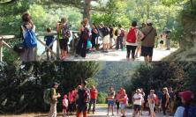 Alla scoperta di Valfornace: tutte le passeggiate gratuite in programma nell'estate 2021