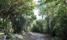 Riqualificazione del parco di Villa Lauri : menzione speciale al Comune di Macerata