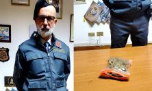Civitanova, il fiuto del cane antidroga non fallisce: la Finanza arresta 30enne pluridenunciato