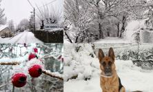 Tolentino, la neve arriva sulle colline: nessun affanno per la viabilità cittadina (FOTO)