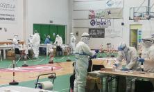 Civitanova, oggi ultima giornata di screening: 12 positivi su 943 test eseguiti nelle ultime 24 ore