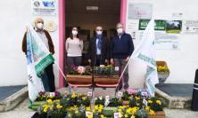 8 Marzo, fiori e mimose per ogni Casa di Riposo dell'ATS 15: il dono di tre associazioni maceratesi