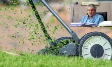 Tolentino, dalla cura del verde alla pulizia dell'area container: gli impieghi per chi percepisce reddito di cittadinanza