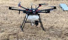 Un drone per combattere le patologie delle piante: al via il progetto pilota S.F.I.D.A.