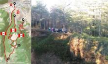 San Severino, tre nuovi sentieri per escursionisti: nasce l'Anello del Monte San Pacifico
