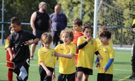 Rugby, palla ai più piccoli