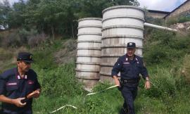 San Ginesio, 50 suini fatti morire di sete e liquame disperso sul suolo: denunciato un allevatore