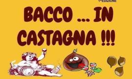 """Mogliano, San Martino si festeggia in piazza con """"Bacco in Castagna"""""""