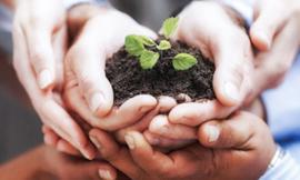 """""""Sosteniamo il Biologico"""", a Recanati il convegno sull'imprenditoria agricola e agroalimentare bio"""