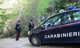 Veterinario ucciso a coltellate, pm chiede 18 anni per Valerio Andreucci