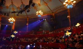 """A Civitanova domenica si festeggia il """"World Circus Day"""""""