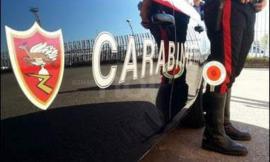 Rissa tra 50 persone a Trodica: all'arrivo dei carabinieri fuggono tutti
