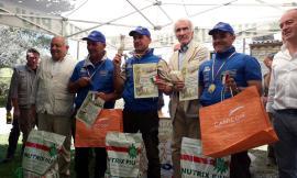 a9e9da931224 Federcaccia Macerata, un successo il 50° Campionato Italiano S. Uberto a  squadre
