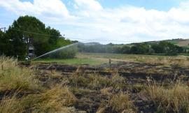 Pollenza: fiamme in un terreno, intervengono i Vigili del Fuoco (FOTO)