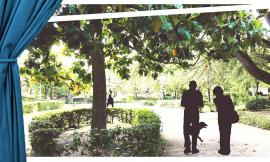 """""""Un pomeriggio meridiano"""" ai giardini pubblici di San Severino"""
