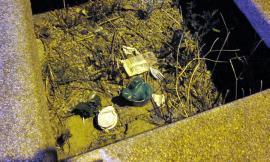Civitanova, cane defeca nei giardini: cittadino richiama i padroni e chiede di pulire