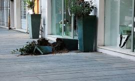 Civitanova, rompe un vaso e rovescia bidoni della spazzatura in centro: denunciato