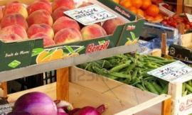 Vendita itinerante degli alimenti: il cattivo stato di conservazione può portare alla condanna dell'ambulante