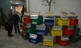 """San Severino, il prossimo fine settimana torna il """"Weekend dell'apicoltore"""""""