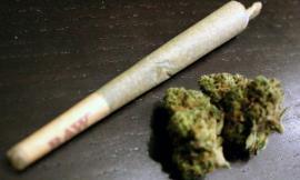 Monte San Martino, trovato con 12 grammi di marijuana e un martello: bloccato un 20enne