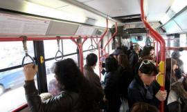 Porto Recanati, aziona l'allarme di emergenza su un autobus e viaggia senza biglietto: denunciato 19enne