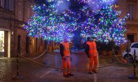 Montefano, dopo tre settimane di lavoro il grande albero di Natale sta per accendere le luci