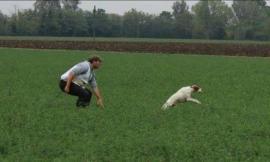 Pievebovigliana, il dresseur Mirko Caramanti in Francia ai campionati europei di caccia per cani razza pointer