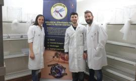 Insetticida rivoluzionario, al rush finale la campagna per i giovani ricercatori di Biovecblok