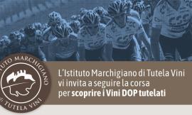 Ciclismo, la Tirreno Adriatico 2019 omaggia la DOC marchigiana: wine stage dedicata al Verdicchio