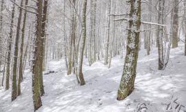 Neve di Maggio a Frontignano di Ussita, la foto-storia di un escursione con la Guida (FOTO)